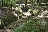 00007 Brushy Mountain Road - Photo 6