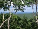 8237 Cox Mountain Drive - Photo 1