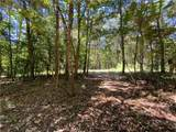 Lot 9 Mineral Springs Road - Photo 1