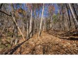 1317 Coachwhip Trail - Photo 14