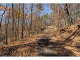 1317 Coachwhip Trail - Photo 15