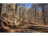 1317 Coachwhip Trail - Photo 3