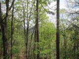 1317 Coachwhip Trail - Photo 5