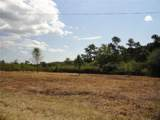 Lot 3 Pea Ridge Road - Photo 2