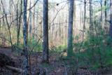 0 Nimblewill Creek Road - Photo 1