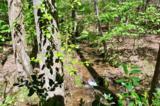 201 Woodland Trace - Photo 34