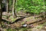 201 Woodland Trace - Photo 35