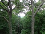 327 Sanderlin Mountain Drive - Photo 8