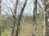 Lt144 Trailwood Drive - Photo 3