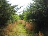 1615 Bettis Tribble Gap Road - Photo 8