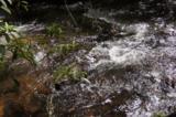 17 Etowah Trail - Photo 2