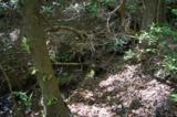 17 Etowah Trail - Photo 6