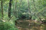 17 Etowah Trail - Photo 9