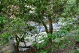 221 Ash Trail - Photo 29