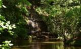 221 Ash Trail - Photo 4