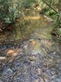 00 Nimblewill Creek Road - Photo 1