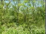 335 Blazingstar Trail - Photo 1