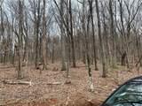 1321 Coachwhip Trail - Photo 3