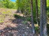 LT 5 Hunter Ridge - Mountain Lake Road - Photo 33