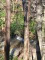 33.71 Acres Rocktree Road - Photo 10