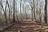 33.71 Acres Rocktree Road - Photo 29