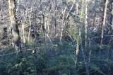 33.71 Acres Rocktree Road - Photo 31