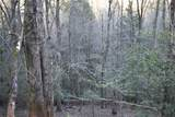 33.71 Acres Rocktree Road - Photo 34