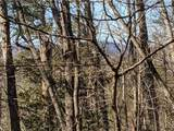 33.71 Acres Rocktree Road - Photo 5