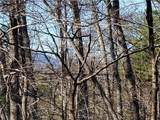 33.71 Acres Rocktree Road - Photo 6