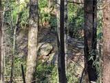 33.71 Acres Rocktree Road - Photo 8