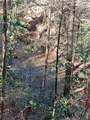 33.71 Acres Rocktree Road - Photo 9