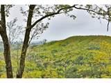 354 Owl Mountain Lane - Photo 6