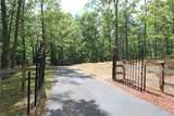 100 Williams Creek Trail - Photo 4