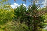 27205 Plantation Drive - Photo 25