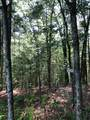Lot 8 Mountain Falls Overlook - Photo 11