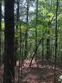 Lot 8 Mountain Falls Overlook - Photo 12