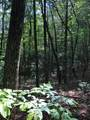 Lot 8 Mountain Falls Overlook - Photo 9