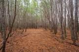 1 Skyridge Trail - Photo 41