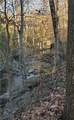 1600 Clifton Ridge - Photo 5
