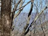 132 Black Bear Ridge - Photo 6
