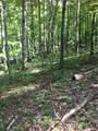 593 Byrd Mountain Lane - Photo 4