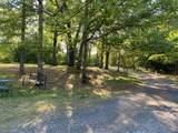 696 Chicken Lyle Road - Photo 5