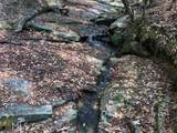 0 Brooks Trail - Photo 6