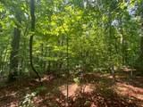 0 Bear Trail - Photo 6