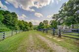 483 Puckett Creek Road - Photo 12