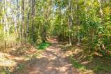 Lot 21 Mineral Springs Road - Photo 10