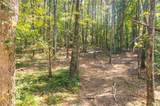 Lot 21 Mineral Springs Road - Photo 9