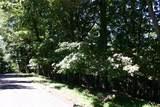 4313 Shadowick Mountain Road - Photo 2