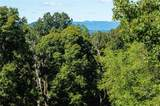 8548 Campground Road - Photo 10