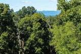8548 Campground Road - Photo 64